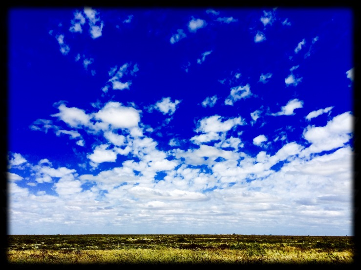 Hay Plains, NSW
